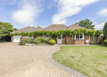 Thumbnail 3 bed detached bungalow for sale in Crowthorne Road, Sandhurst, Berkshire