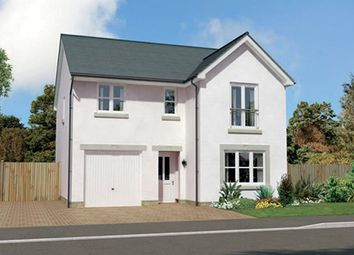 "Thumbnail 4 bed detached house for sale in ""Glenmore"" at Montrose Road, Arbroath"