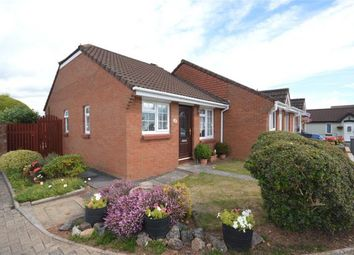 Thumbnail 1 bed bungalow for sale in Deacon Close, Alphington, Exeter, Devon