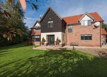 Thumbnail 5 bed detached house for sale in Low Common, Bunwell, Norwich