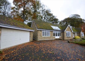 Thumbnail 4 bed bungalow to rent in Orchard Close, Barkston Ash, Tadcaster