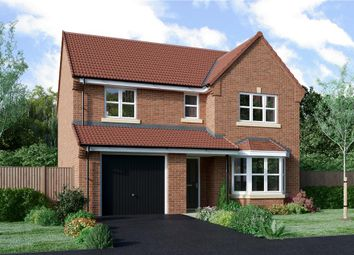 "Thumbnail 4 bedroom detached house for sale in ""Ashbery"" at Milby, Boroughbridge, York"