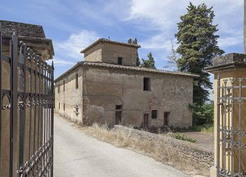 Thumbnail Farm for sale in Castellina In Chianti, Florence, Tuscany, Italy