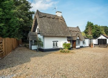 Thumbnail 4 bed cottage for sale in Norwich Road, Brome, Eye, Suffolk