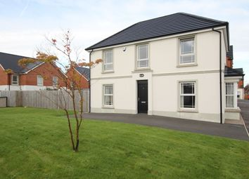 Thumbnail 3 bed detached house for sale in Sandymount Green, Newtownabbey