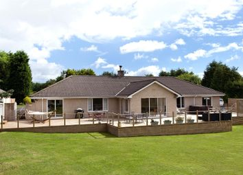 Thumbnail 3 bed bungalow for sale in Grangeburn House, Coldingham, Eyemouth