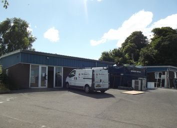 Thumbnail Industrial to let in Nelson Road Industrial Estate, Dartmouth