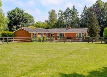 Thumbnail 3 bed detached bungalow for sale in Swallow Hill, Thurlby, Bourne