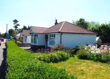 Thumbnail 2 bed bungalow for sale in Broncoed Park, Mold, Flintshire