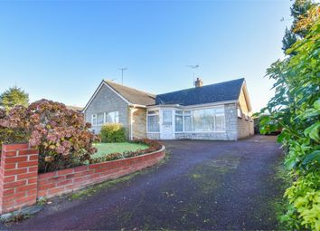 Thumbnail 3 bed detached bungalow for sale in Holly Road, Stanway, Colchester, Essex