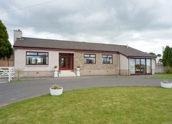 Thumbnail 4 bed bungalow for sale in Lee Meadow Road, Braidwood, Carluke, South Lanarkshire