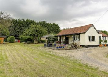 Thumbnail 3 bed detached bungalow for sale in Royston Road, Buntingford