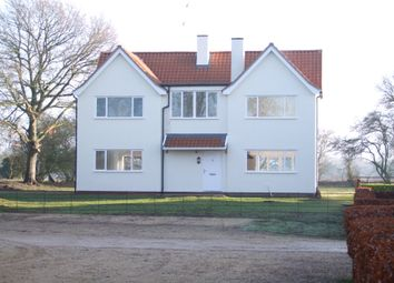 Thumbnail 4 bed detached house for sale in Blyth View, Blythburgh, Halesworth