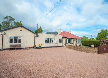 Thumbnail 4 bed detached bungalow for sale in Llangrove, Ross-On-Wye