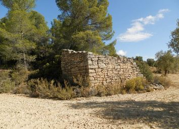 Land for sale in Parcello 31 Poligono 8, Arens De Lledo, Mattarrana, Spain, Mattaranna SA38 9As, Spain