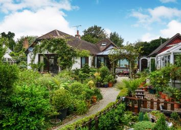 Thumbnail 4 bed detached house for sale in Bridle Lane, Slindon
