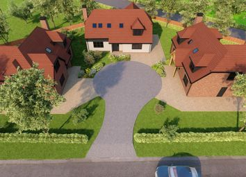 Thumbnail 4 bed detached house for sale in The Ride, Ifold