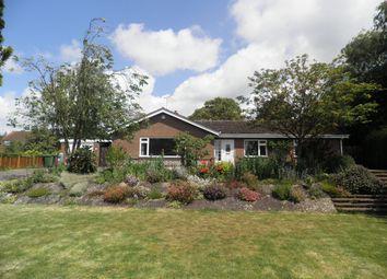 Thumbnail 3 bedroom bungalow to rent in Hayes Lane, Fakenham