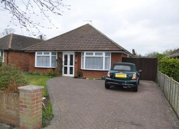 Thumbnail 3 bed detached bungalow to rent in Chelsworth Avenue, Ipswich