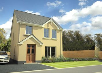 Thumbnail 3 bed detached house for sale in Olivers Close, Portaferry, Newtownards