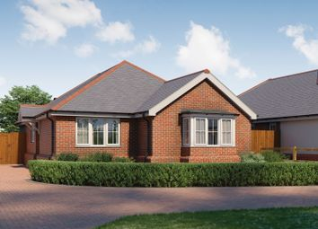 Thumbnail 3 bed detached bungalow for sale in The Street, Assington, Sudbury