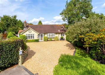 Thumbnail 3 bedroom detached bungalow for sale in Northchapel, Petworth, West Sussex