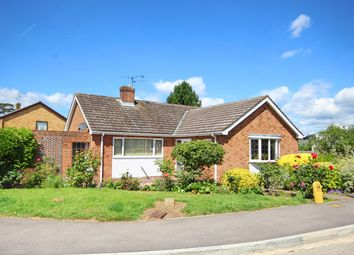Thumbnail 3 bed bungalow for sale in Gilmore Way, Great Baddow, Chelmsford