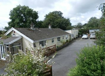 Thumbnail 3 bed detached bungalow for sale in Yr Onnen, Penuwch, Tregaron