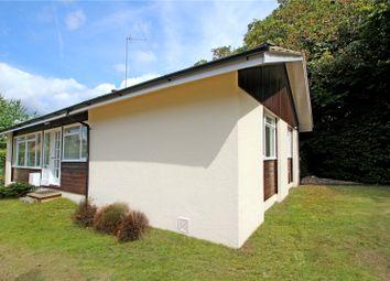 Thumbnail 3 bed detached bungalow to rent in School Hill, Seale, Farnham, Surrey