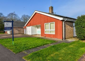 Thumbnail 3 bed detached bungalow for sale in Rambler Close, Stanway, Colchester, Essex