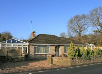 Thumbnail 3 bed detached bungalow for sale in Avenue Road, Sandown