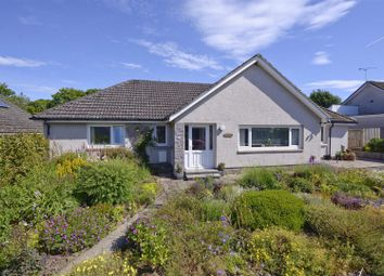 Thumbnail 4 bed bungalow for sale in Silverbeck, 12 Pinnaclehill Park, Kelso