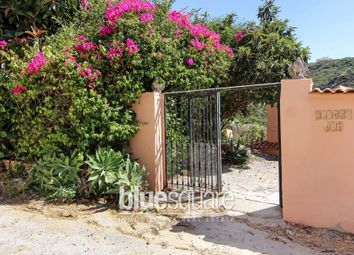 Thumbnail 2 bed apartment for sale in Manilva, Andalucia, 29660, Spain