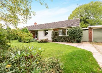 Thumbnail 4 bed detached bungalow for sale in Shuckburgh Road, Priors Marston, Southam