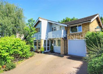 Thumbnail 4 bedroom detached house for sale in Melford Road, Sudbury