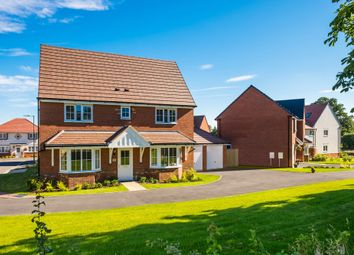 "Thumbnail 4 bedroom detached house for sale in ""Alnwick"" at Blackthorn Crescent, Brixworth, Northampton"