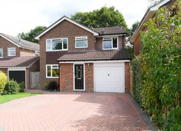 4 bed detached house to rent in Ryecroft Meadow, Mannings Heath, Horsham RH13