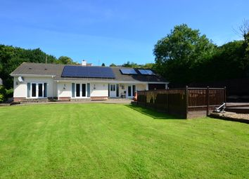 Thumbnail 4 bed detached bungalow for sale in Swimbridge, Barnstaple