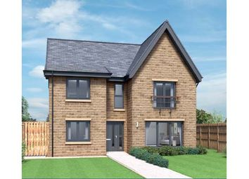 "Thumbnail 4 bed detached house for sale in "" Savannah Cragside"" at Bradley Hall"