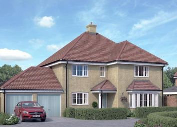 Thumbnail 5 bedroom detached house for sale in Runwell Road, Runwell, Essex