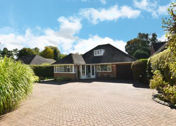Thumbnail 4 bed detached bungalow for sale in Waverley Grove, Solihull