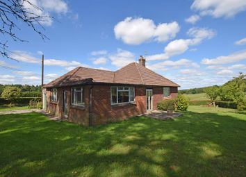 Thumbnail 2 bed detached bungalow for sale in Brightstone Lane, Farringdon, Alton