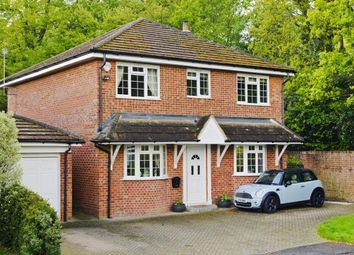 Thumbnail 5 bed detached house for sale in Windlesham, Surrey, United Kingdom