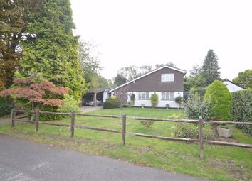 Thumbnail Detached house to rent in Church Hill, Redhill, Surrey