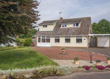 Thumbnail 3 bed detached house for sale in Rose Acre, Holton St Mary