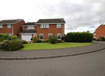 Thumbnail 5 bedroom detached house for sale in Devonshire Avenue, Ripley