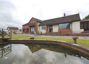 Thumbnail 4 bed property to rent in Roundthorn, Penrith