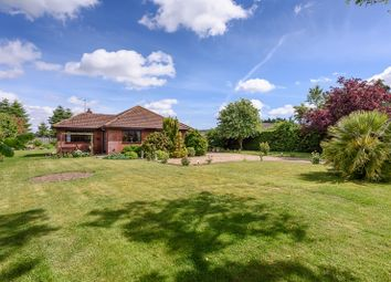 Thumbnail 3 bed detached bungalow for sale in Lound Road, Blundeston