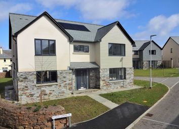 Thumbnail 5 bed detached house for sale in Wellspring Place, Vinery Lane, Elburton