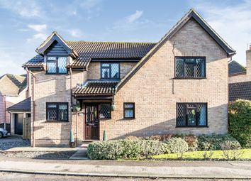 Thumbnail 4 bed detached house for sale in Goldcrest Close, Colchester